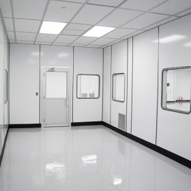 cleanroom-big4